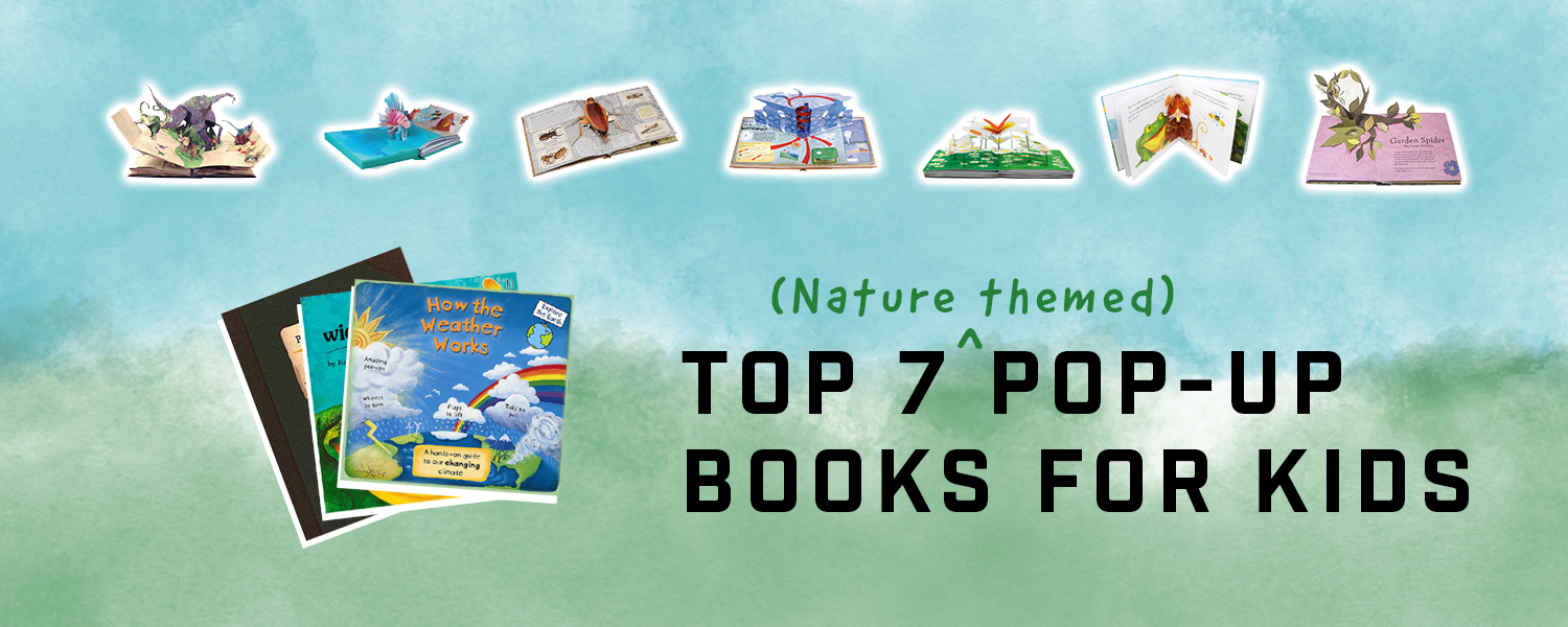Top 7 Pop Up Books For Kids on Amazon - Happy Little Tadpole